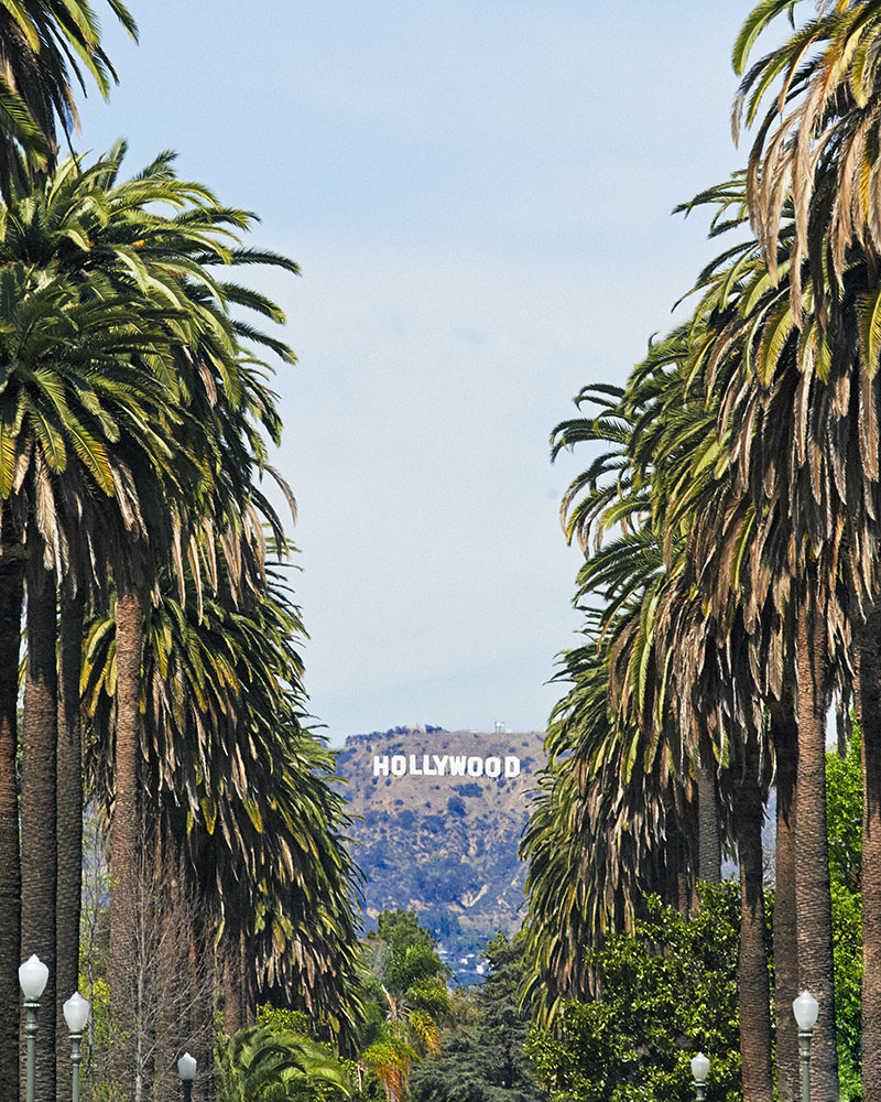 Hollywood Sign 1 ABD 10006